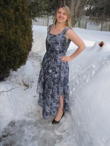 Sheer Dress 2